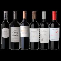 Barracas Toso, Tonel 22, Benegas, Domaine Bousquet, Valle Las Nencias y Sophenia 2