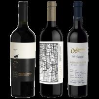 Casarena Sinergy SB Cabernet Sauvignon 2015 + Perro Callejero Blend de Malbec 2016 + Colomé Lote Especial Altitude Blend – Malbec Tannat 2017