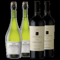 Partida Limitadas Extra Brut - Sophenia Synthesis Cabernet Sauvignon 2016