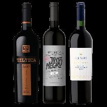 Tinto Negro, HJ Fabre y Telteca