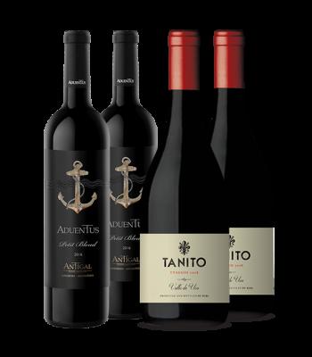 Las nuevas caras del vino argentino