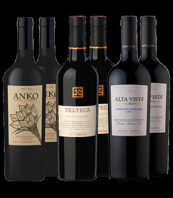 Anko Flor de Cardon + Telteca Gran Reserva + Alta Vista Terroir