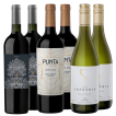 HJ Fabre Cabernet Franc - Punta de Flechas Blend - Finca Sophenia Chardonnay